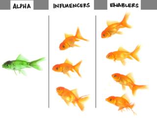 Alpha strategies