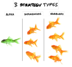 3 strategy types