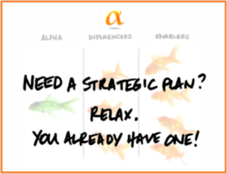 Need a Strategic Plan
