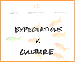 Expectations v Culture