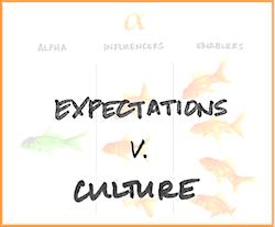 Expectations v Culture